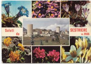 Saluti da SESTRIERE, 1969 used Postcard
