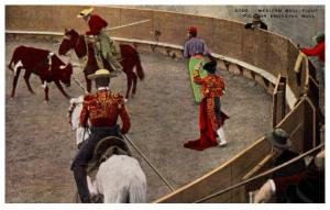 Mexico , Bull Fight Picador engaging Bull