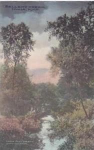 Michigan Ionia Bellemy Creek Handcolored Albertype