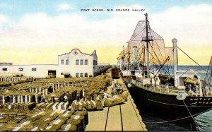 Texas Rio Grande Valley Port Scene Loading Cotton