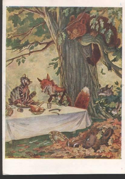 118824 Hungry CAT & FOX & WILD BOAR & BEAR WOLF HARE old PC