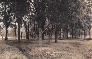 Smithland Iowa~Path Thru Tall Grass in Park~Gazebo in Trees~c1912 RPPC