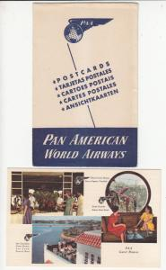 Pan American Airways Commercial aviation transportation advertising PAA parrot
