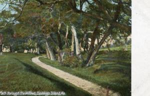 ME - Cushings Island. Path through the Willows