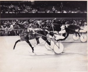 RP; MICHIGAN, MAJOR FORTUNE Won The Final Michigan Colt Stake, Harness Horse ...