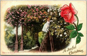 1910s California CHRISTMAS Postcard Roses All the Year Round PNC Unused