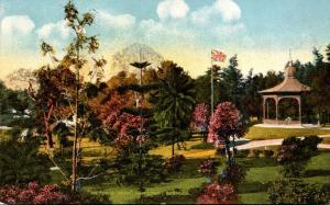 Bermuda Hamilton Visitor's Park