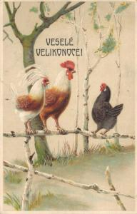 Happy Easter vintage postcard Rooster and chickens Czech republic 02.22