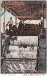 Sugar Cane Pressing Machine Havana Cuba 1912