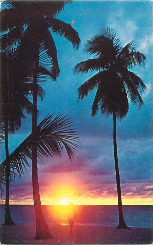 Sunset in Barbados green throated carib bird stamp