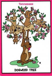 Humour Tennessee Dogwood Tree