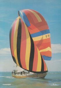 Champagne 1970s German Ocean Sailing Racing Boat Admirals Cup Solent Postcard