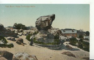 Kent Postcard - Toad Rock - Royal Tunbridge Wells - Ref TZ7340