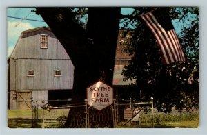Waterloo NY- New York, Historic Scythe Tree, Finger Lakes, Chrome Postcard