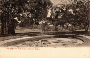 SINGAPORE PC Bot. Garden Victoria Regia (a1478)