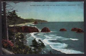 Rugged Coast Line Vista Pacific Northwest Postcard 4098