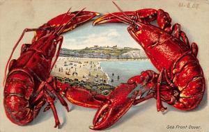 England Sea Front Dover Beach Strand Coast, Lobster fantasy card 1905
