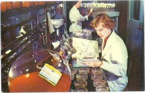 Research Area Lederle Laboratories Pearl River NY American C