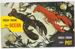 Lobster, ME