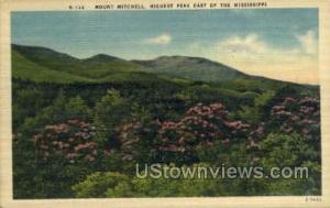 Highest Peak East of Mississippi Mount Mitchell MS 1950