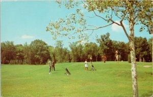 Golfing at Crowe's Landing Stony Lake Golf Course Kawartha Region Postcard G29