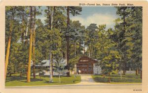 Itasca State Park Minnesota~Forest Inn~Men by Trees in Front of Cabin~1940s Pc