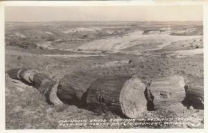 RP: Petrified Forest Nat'L Monument, 1930-40s ; Frashers Photo PC