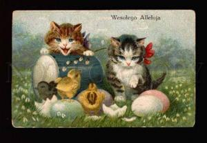 002490 KITTENS w/ Chicken Vintage EASTER colorful PC