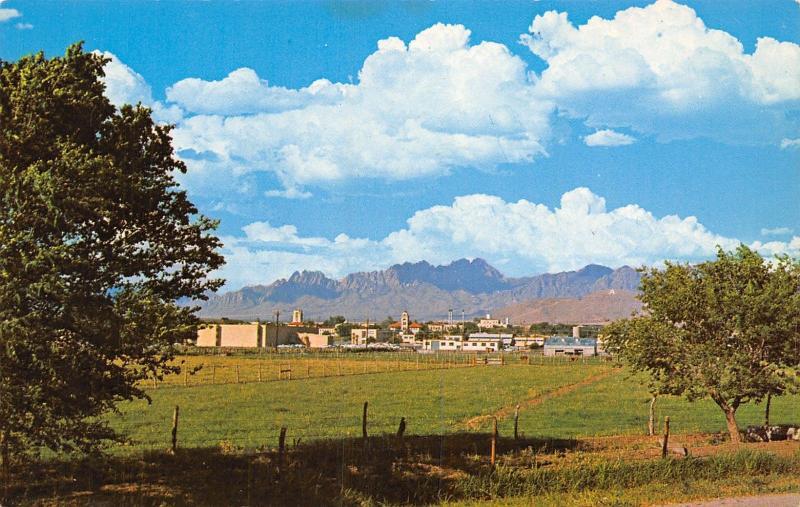 Las Cruces New Mexico State University Nmsu Campus Panorama 1960s Postcard Hippostcard
