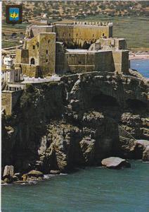 Aerial View of Castle, PENISCOLA, Castellon, Comunidad Valenciana, Spain, 50-...