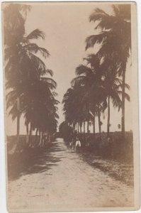 RP: ST CROIX , D.V.I. , 1900-10s , Road