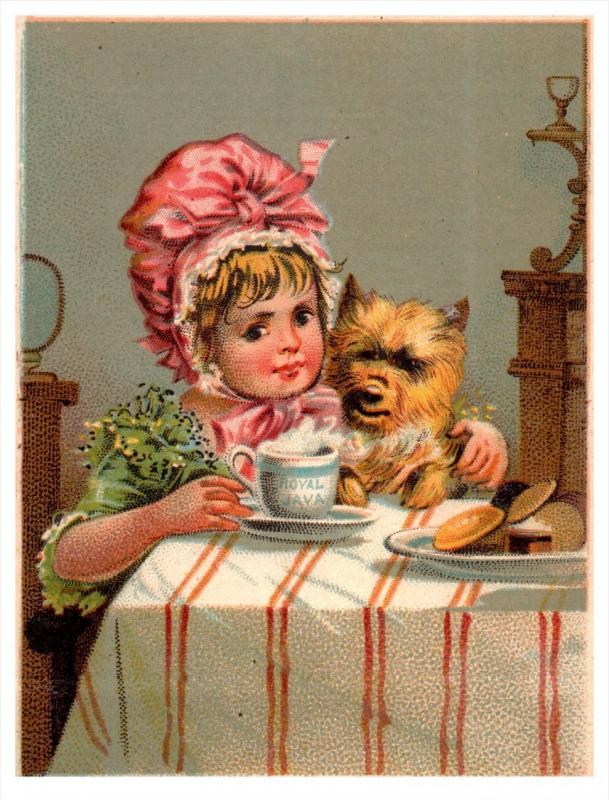 2405   Royal Java Coffee  3 Trade Cards