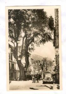 RP, Vieux Frene De Francois 1er, Vence (Alpes Maritimes), France, 1920-1940s