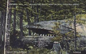 New York Catskill Mountains Aligator Rock