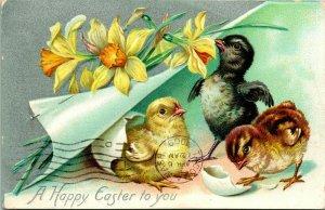 Vtg Carte Postale Tuck's Pâques Séries 112 - Chicks & Jonquilles - Happy pour