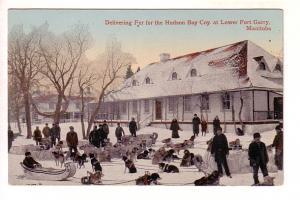 Delivering Fur, Hudson Bay Company, Lower Fort Garry, Manitoba, Dogs, Sleighs...