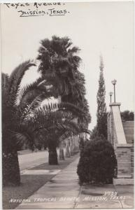 Texas Tx Postcard  c30-40s MISSION Natural Tropical Beauty Stairs Palms