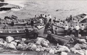Tristan da Cunha, Longboats preparing to sail from Nightingale Island, 1974