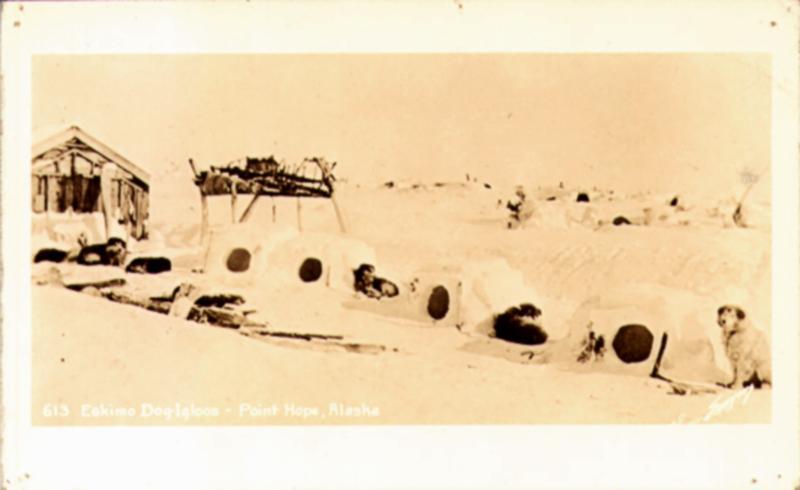 1940 Point Hope, North Slope, Alaska Real Photo Postcard, Sled Dog Igloos
