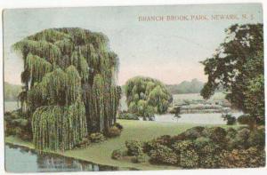 Branch Brook Park Newark NJ 1909
