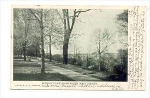 Seneca Lake From South Main Street, New York, PU-1907