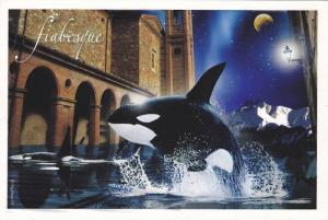 Killer Whale , Fiabesque , 2006