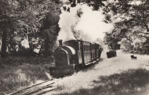 Edward Thomas Train At Rhydyronen Talyllyn Railway Welsh Real Photo Postcard