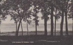 Iowa Okoboji  Lake Okoboji Artvue