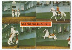 Wien Vienna Austria Spanish Riding School 4X6 Horses