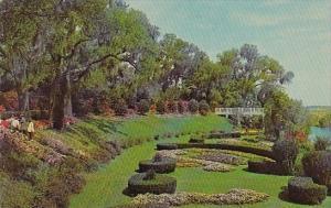 North Carolina Wilmington Gardens At Orton Plantation