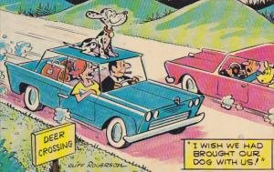 Deer Crossing Dog On Top Of Car