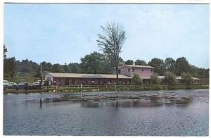 Plattskill NY Gladys Motel Lakeside Autos Postcard