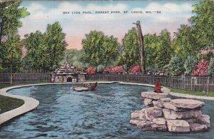 Sea Lion Pool Forest Park Saint Louis Missouri 1938