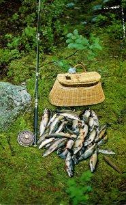 Fishing Days Catch Cabano Temis Canada1987